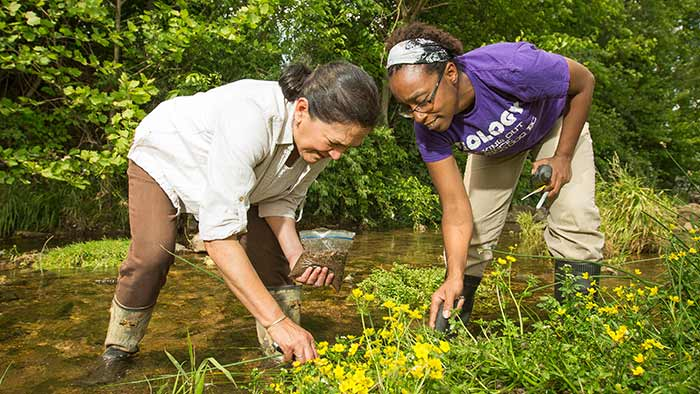 Two faculty members gathering samples next to a stream.