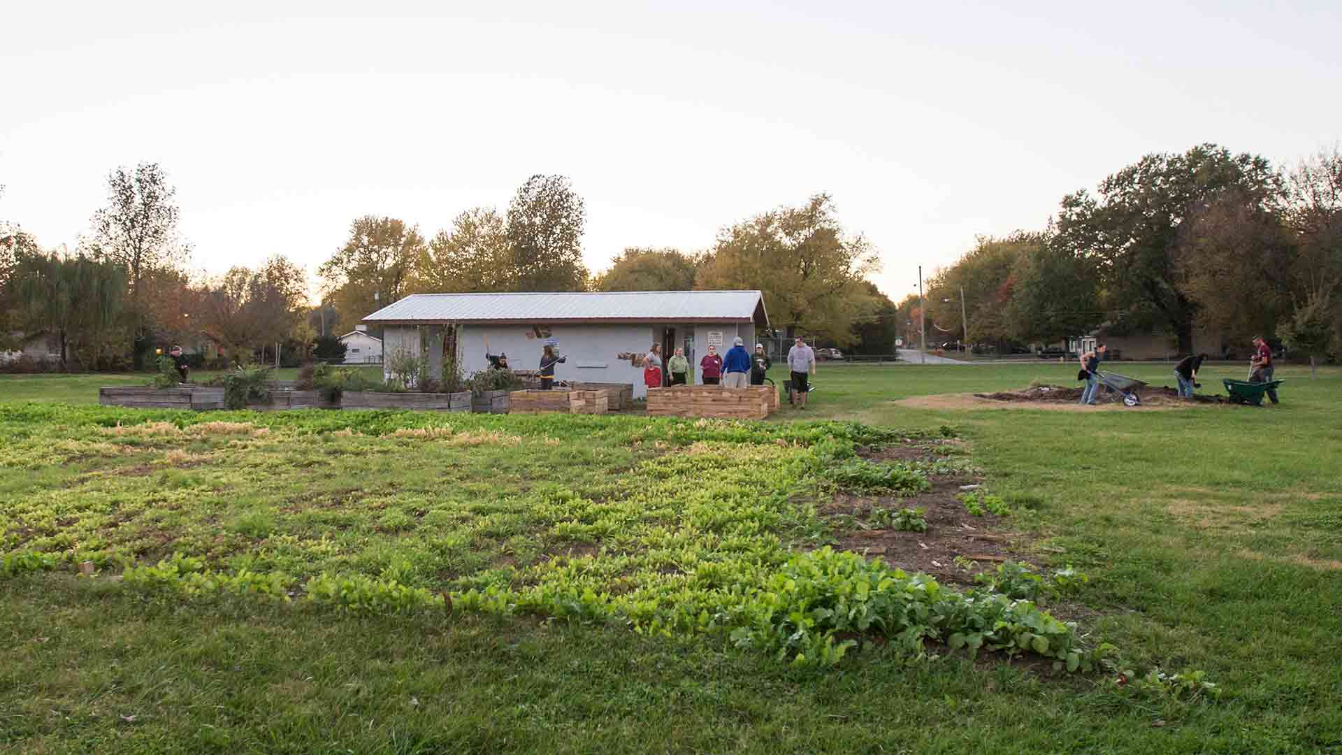 Wide-angle view of community garden with students working in background.
